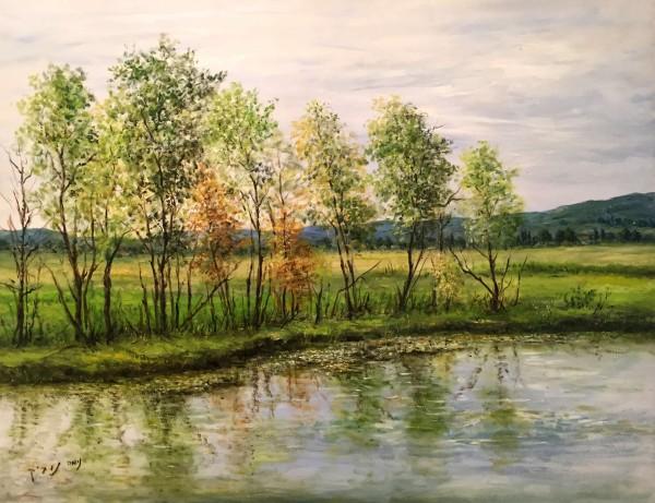 The Lake, 1993